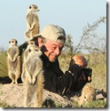 Meerkats, Jack's Camp, Botswana