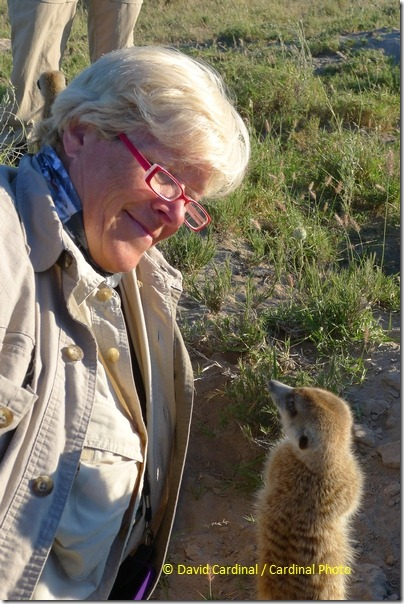This memorable candid of Dianne from our safari with a Meerkat was only possible because I had a small and unobtrusive point and shoot that was easy to maneuver in a crowded situation. Photo taken with Panasonic Lumix DMC-LX5.
