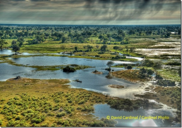 Pl_Okavang_V_Bots_0652