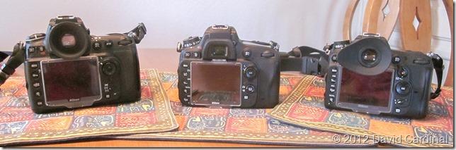 The same three cameras from the back, Nikon D700, Nikon D600, Nikon D7000
