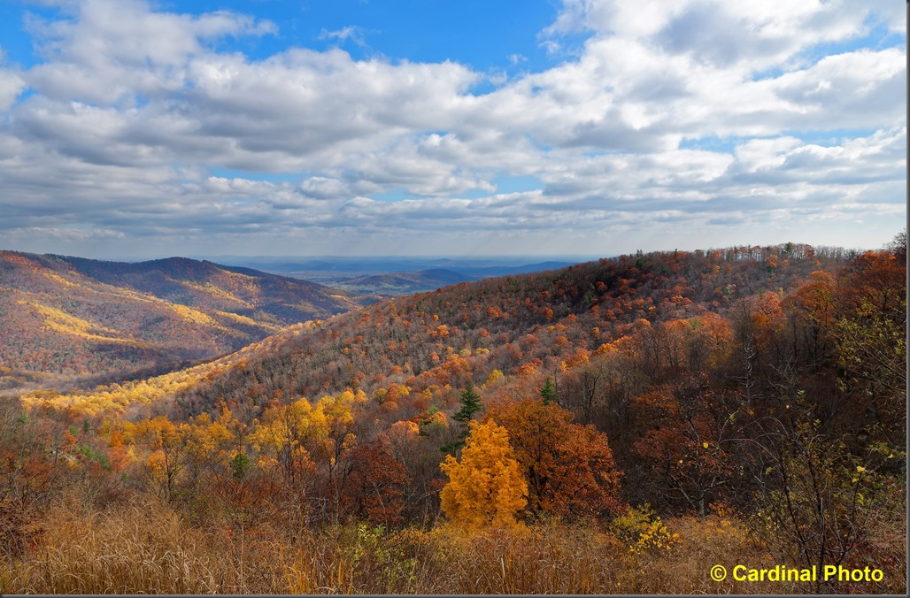 pl_blueridgemountains_0121_dxo_up