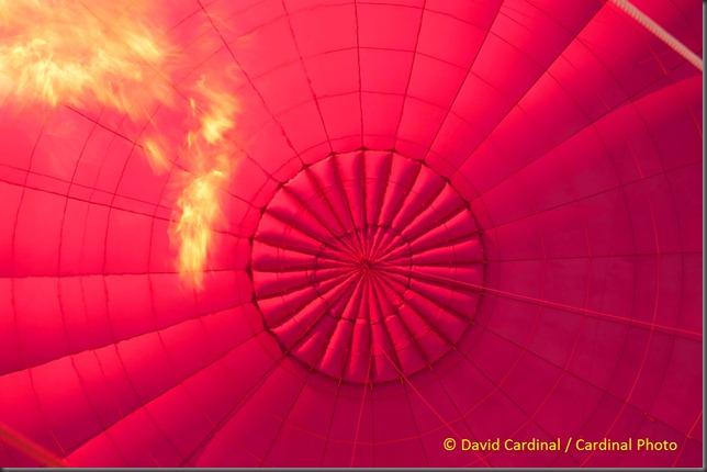 sp_ballooning_0177