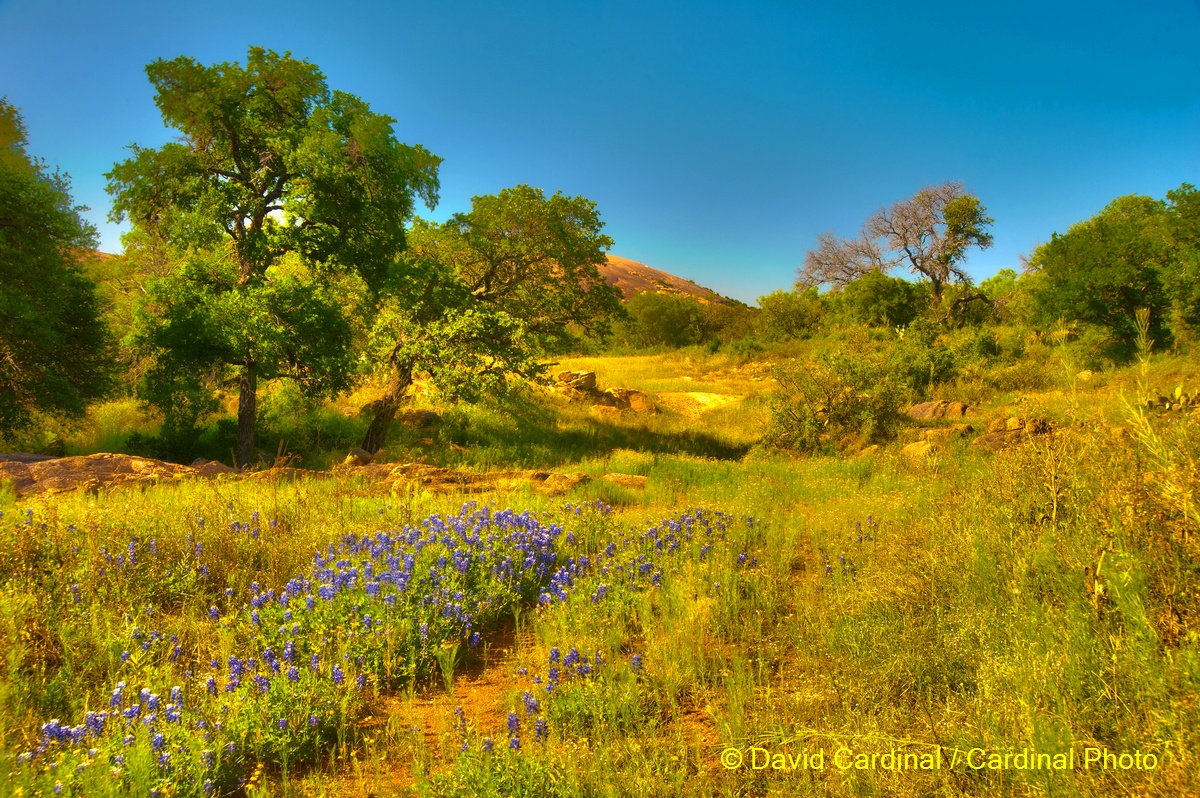 Texas Hill Country Photography - Home | Facebook