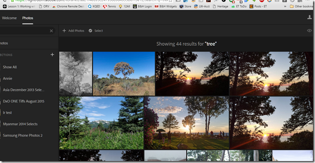 Adobe Lightroom for the web can now recognize objects for more powerful searching