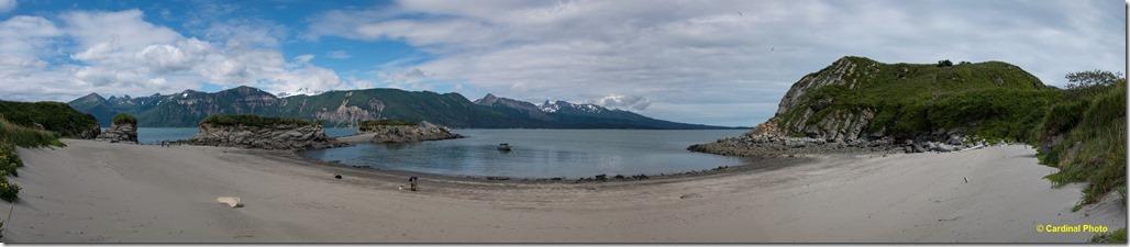 gull island panorama